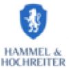 Hammel & Hochreiter Business & Management Consulting Kft.